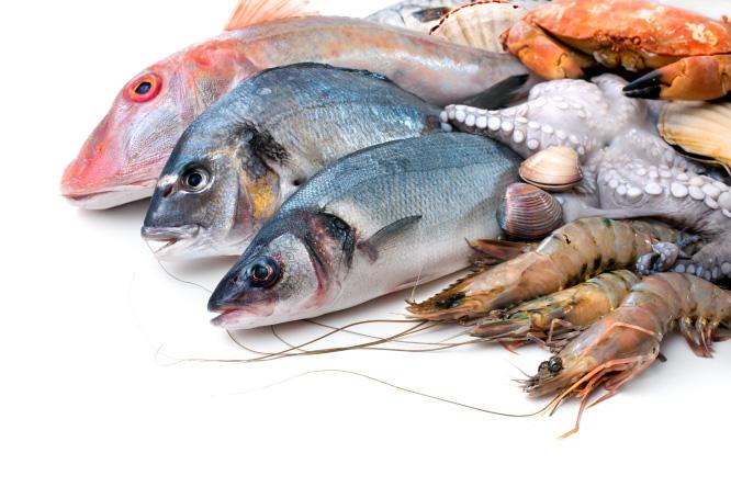 poissons et crustacés - La Grande Marée Oléronaise